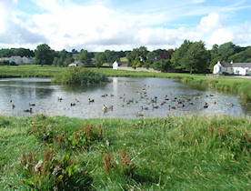 The village green and pond